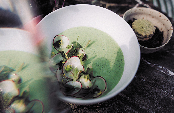 Cold sorrel and yoghurt soup with spinach